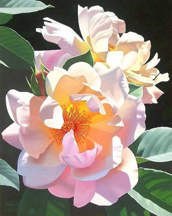 8d33b9fceae0a38bcd48f8d26f2e9099bc81d693017057 (558x700, 375Kb)