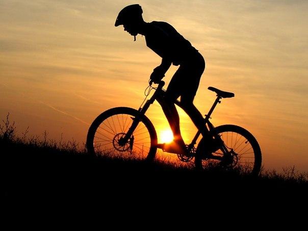 В гору на велосипеде/3241858_Siluet (604x453, 35Kb)