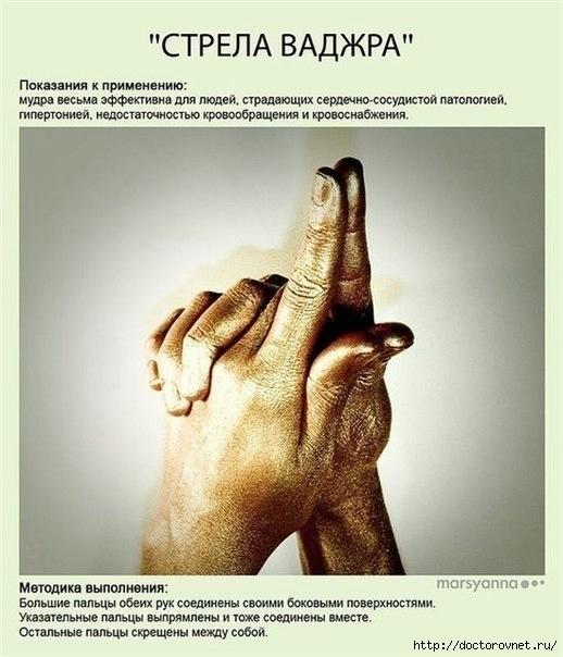 Мудры - йога для пальцев6 (518x604, 157Kb)