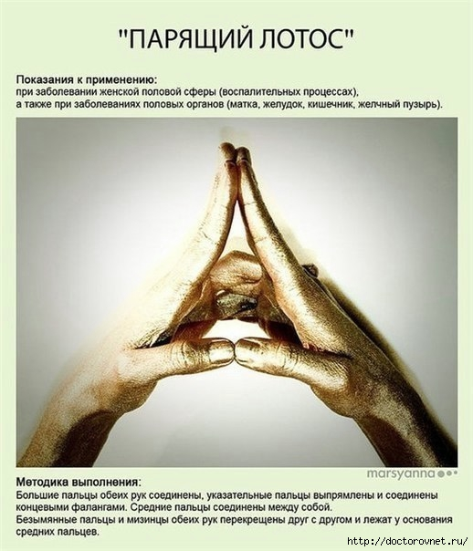 Мудры - йога для пальцев8 (518x604, 156Kb)