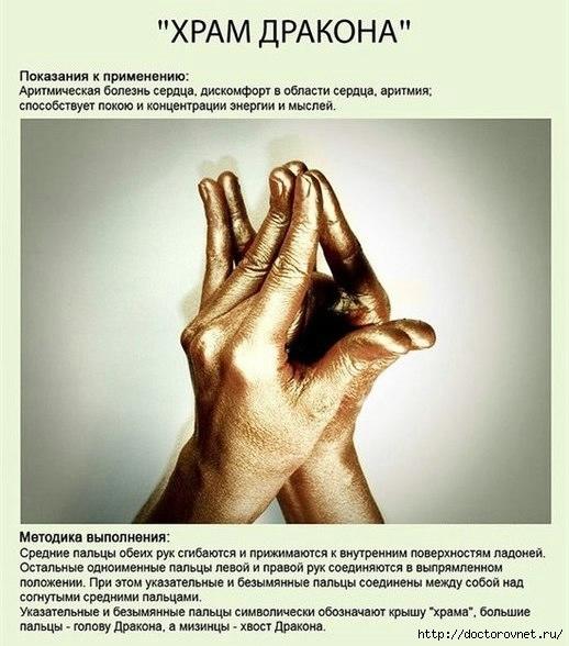 РњСѓРґСЂС‹11 (518x588, 166Kb)