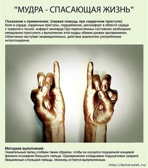 РњСѓРґСЂС‹3 (518x588, 172Kb)