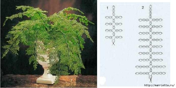 Комнатные цветы из бисера. ПАПОРОТНИК (5) (700x350, 185Kb)