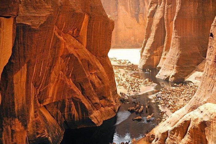 Гельта д'Аршей пустыня сахара фото 2 (700x465, 437Kb)