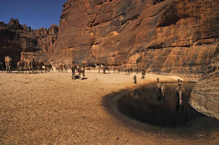 Гельта д'Аршей пустыня сахара фото 3 (700x465, 393Kb)
