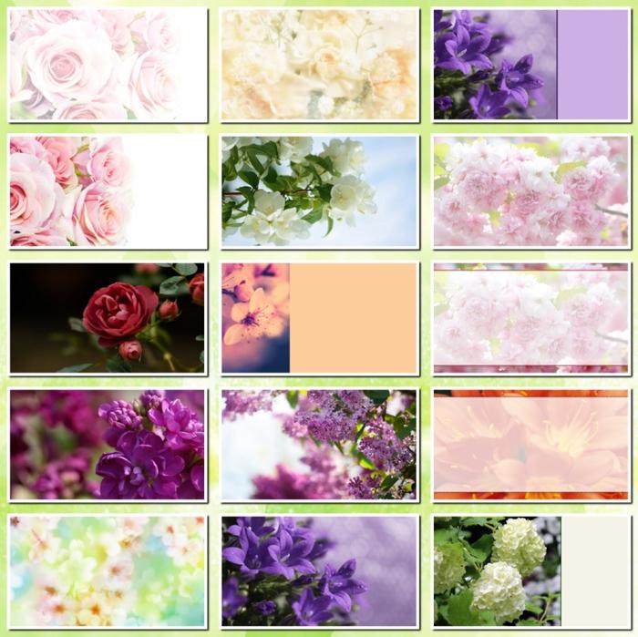 fony cvet 5-2 (700x699, 233Kb)