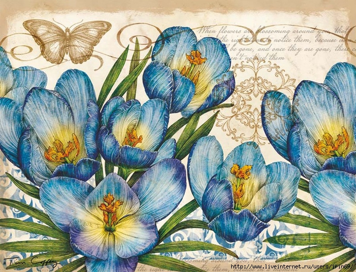 deluxe-note-cards-blue-floral-2080502-2 (700x534, 419Kb)