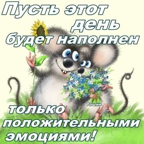 OI_bc0b169f86024af3981cc57247c8081f_big (500x500, 177Kb)