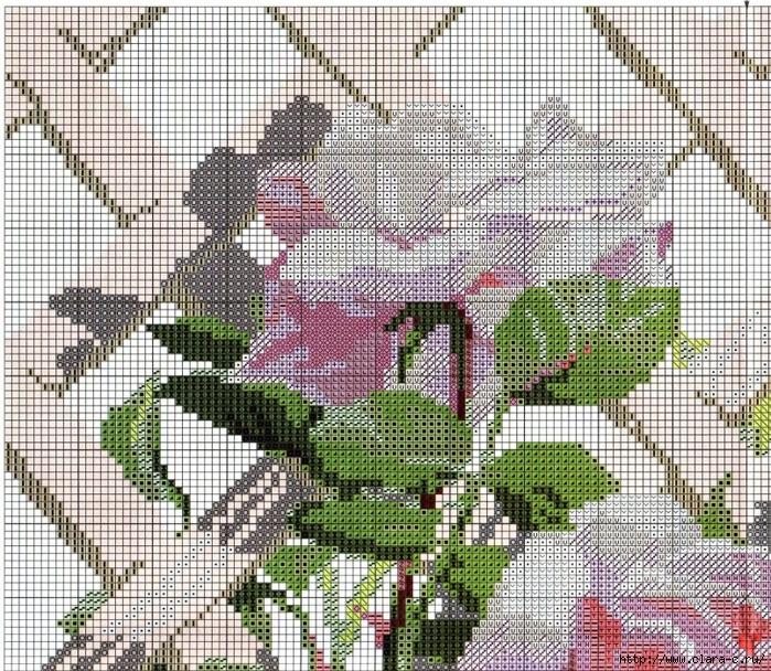 Stitchart-roza-na-reshetke1 (700x608, 554Kb)