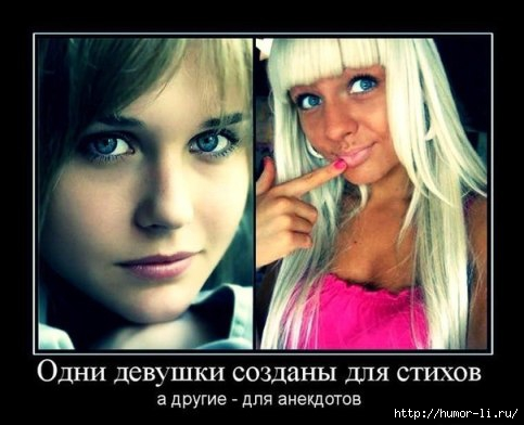 01 анекдоты про блондинок (483x392, 89Kb)