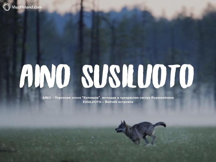 aino-susiluoto-2ru (700x525, 196Kb)