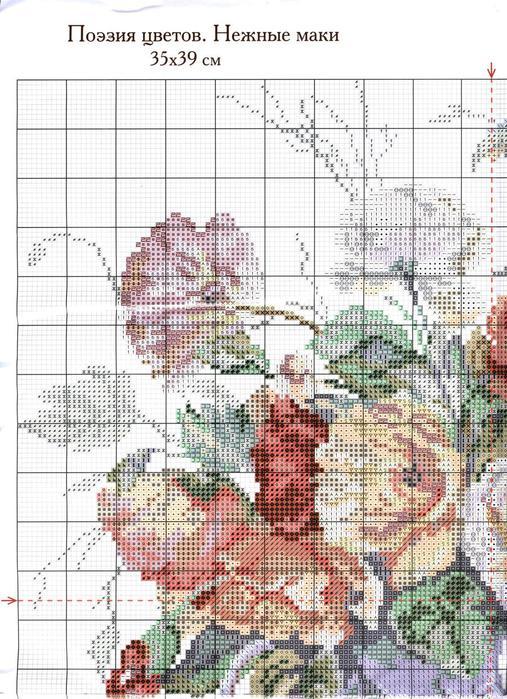 2-11 1 Поэзия цветов. Нежные маки (507x700, 102Kb)