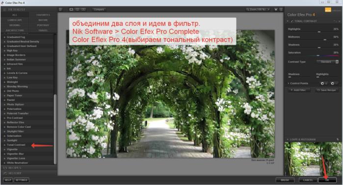 2014-06-08 14-27-44 Color Efex Pro 4 (700x377, 341Kb)