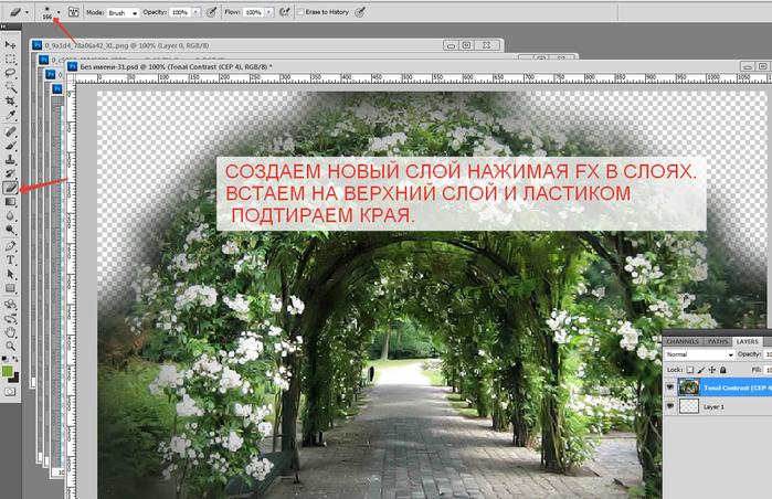 2014-06-08 14-42-22 Без имени-31.psd @ 100% (Tonal Contrast (CEP 4), RGB 8)   (700x452, 495Kb)