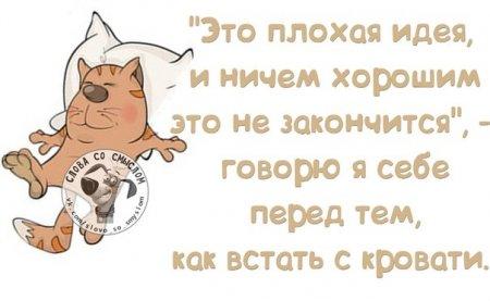 3821971_ytrom_vstat (450x277, 24Kb)