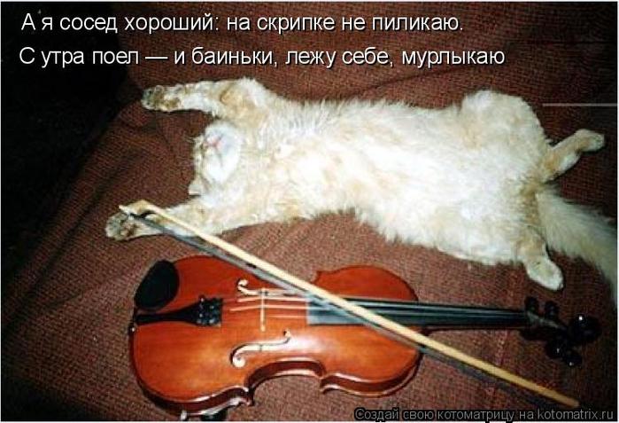 kotomatritsa_xD (700x477, 343Kb)