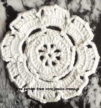 witte bloemen crispy white 007c (349x373, 77Kb)