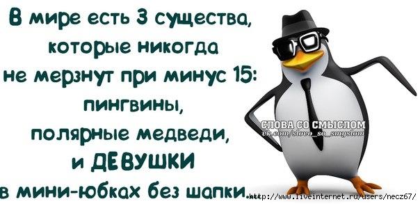 1386269565_frazochki-13 (604x293, 108Kb)