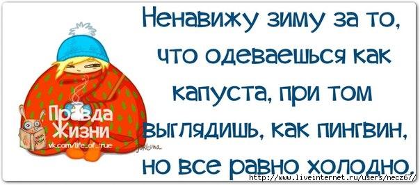 1386269489_frazochki-10 (604x266, 117Kb)