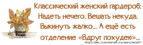 1381307949_frazochki-18 (604x191, 93Kb)