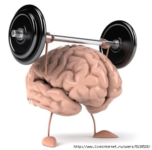 мозг (489x480, 95Kb)