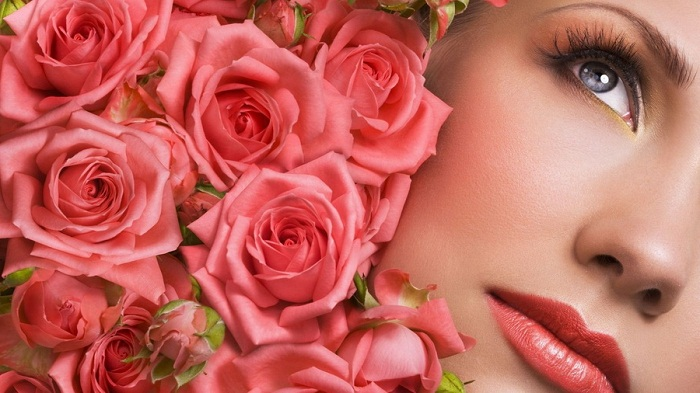 rose (700x393, 108Kb)