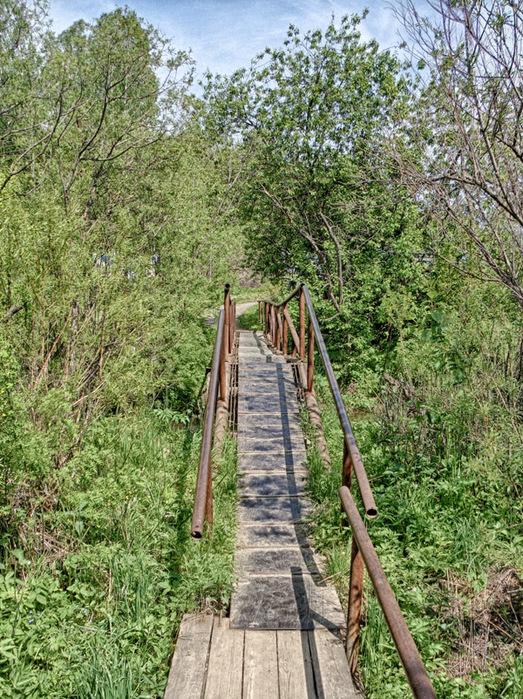 Мост через Издревую/1415502_Most (523x700, 284Kb)