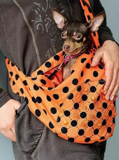 Как сшить переноску для собаки своими руками выкройки фото