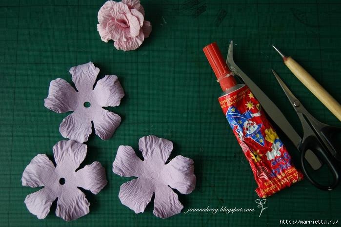 Бумагопластика. Цветочки в торфяных горшочках (12) (700x465, 254Kb)