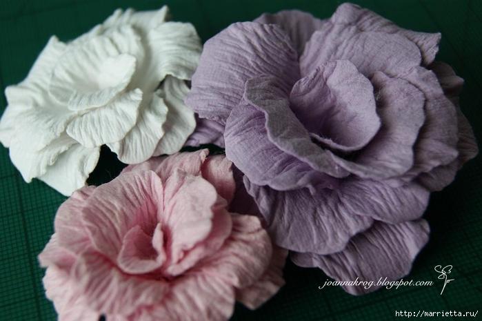 Бумагопластика. Цветочки в торфяных горшочках (28) (700x465, 212Kb)