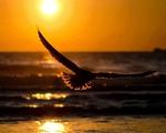 ������ tumblr_n4uwiuDP3G1tr395vo1_1280 (700x560, 164Kb)
