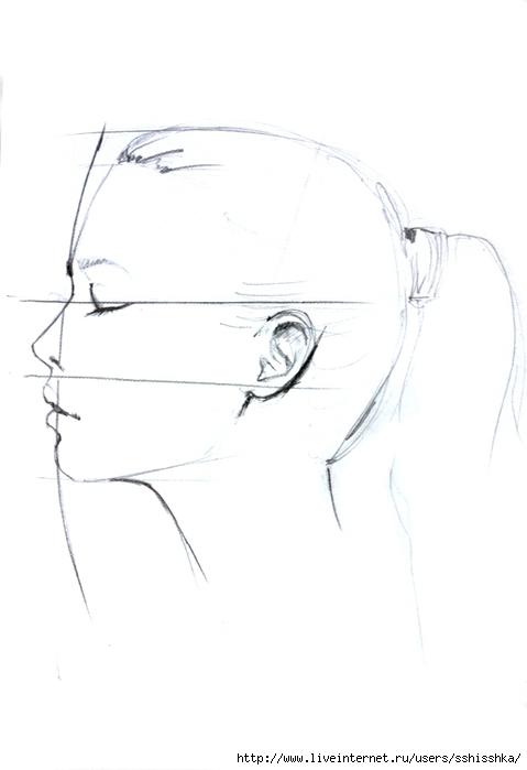 Profile drawing by Elena Ciuprina (479x700, 75Kb)