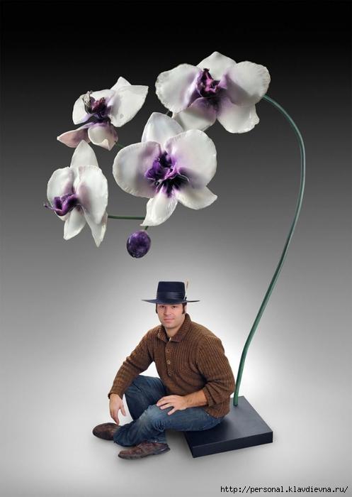 3018479-gigantskie-cvety-iz-stekla-ot-dzhejsona (497x700, 160Kb)