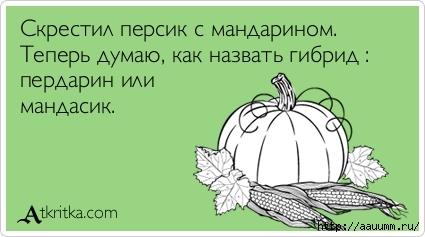 atkritka_1401145197_136 (425x237, 66Kb)