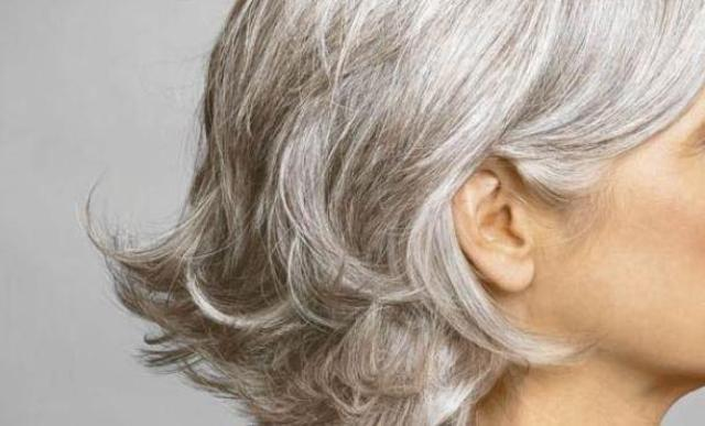 Gray-Hair2 (640x387, 34Kb)