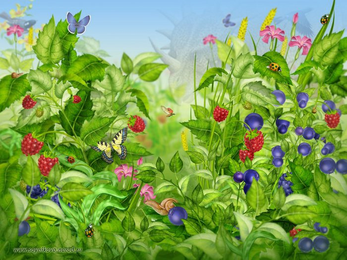 5320643_1244014893_colorfulgarden (700x525, 100Kb)