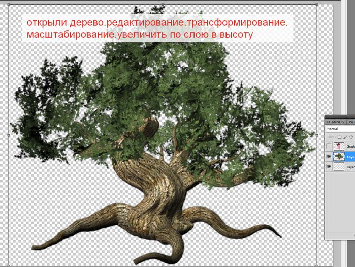 2014-06-15 03-53-58 Без имени-35.psd @ 100% (Layer 2, RGB 8)   (700x525, 494Kb)