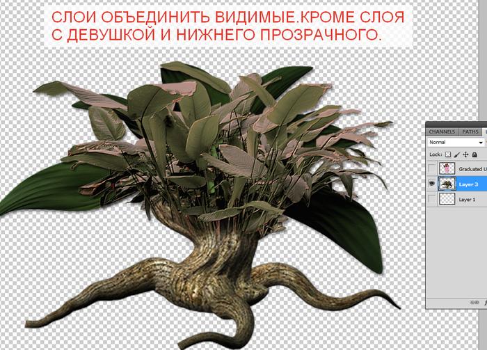 2014-06-15 04-10-56 Без имени-35.psd @ 100% (Layer 3, RGB 8)   (700x503, 408Kb)
