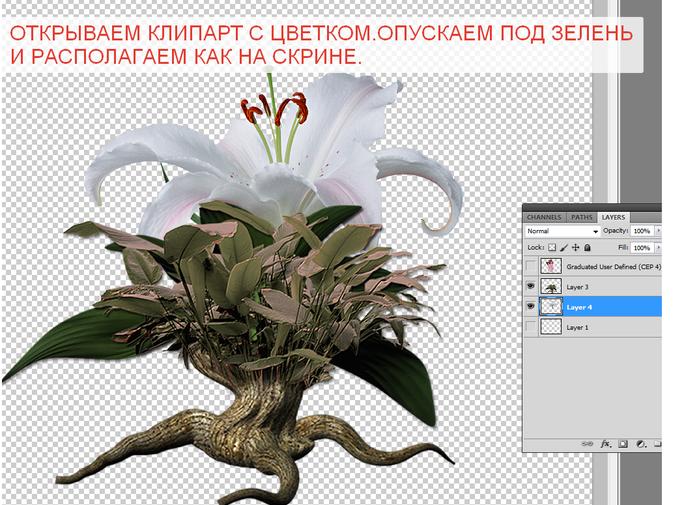 2014-06-15 04-15-09 Без имени-35.psd @ 100% (Layer 4, RGB 8)   (700x505, 365Kb)