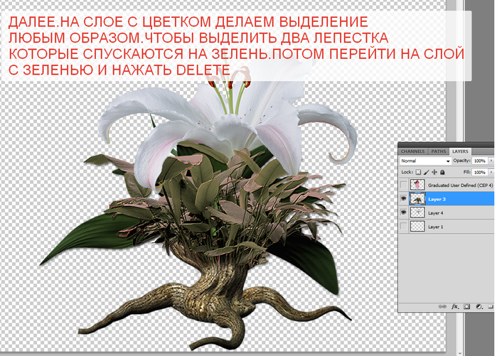 2014-06-15 04-18-29 Без имени-35.psd @ 100% (Layer 3, RGB 8)   (700x501, 362Kb)