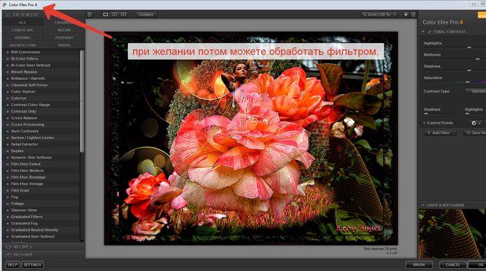 2014-06-15 17-04-31 Color Efex Pro 4 (700x390, 333Kb)
