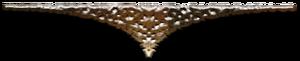 0_d4cdf_4a008723_M (300x61, 23Kb)