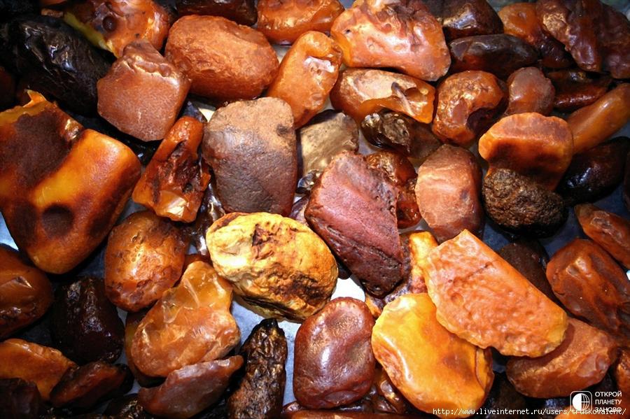 Янтарь камень фото 2 фотография
