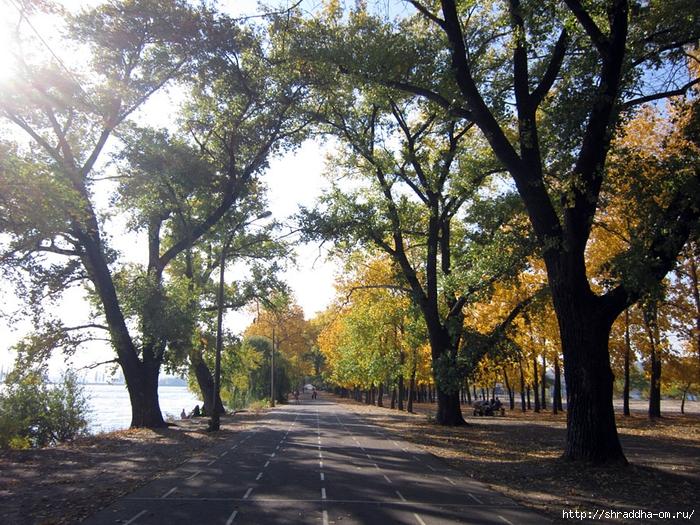 Воронеж, октябрь 2014 (2) (700x525, 446Kb)