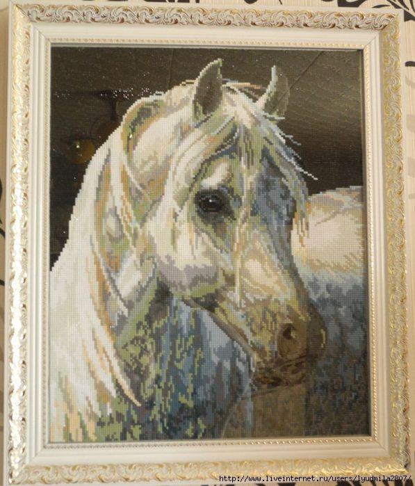 Алмазная вышивка лошадь готовая работа 98