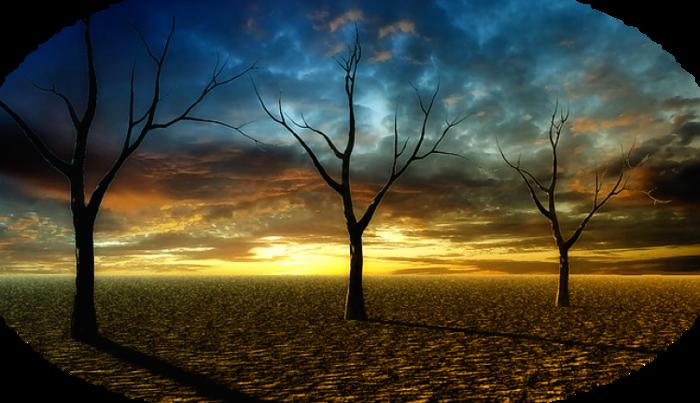 sunset-284213_640 (700x403, 470Kb)