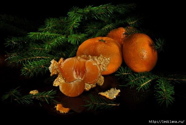 3925311_yolka_mandarini (600x402, 124Kb)