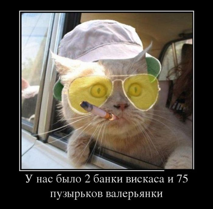 1341397117_1341300673_demotivatory_07 (700x687, 57Kb)