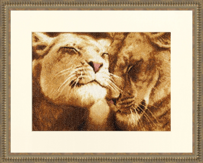 Влюбленные львы (700x562, 495Kb)