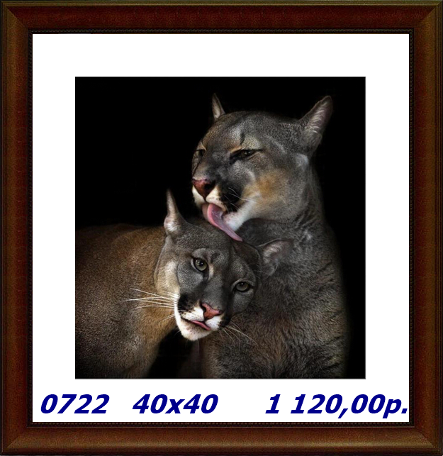 capture-20141014-223938 (625x643, 569Kb)